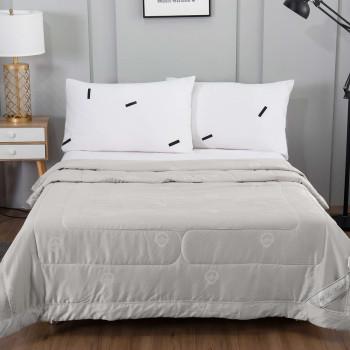 Одеяло Шарлиз Тенсел Серый 200x220